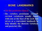 bone landmarks17