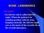 bone landmarks18