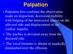 palpation146