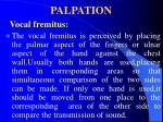 palpation53