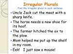 irregular plurals find the irregular plural in each sentence