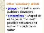 other vocabulary words19