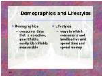 demographics and lifestyles