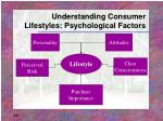 understanding consumer lifestyles psychological factors