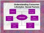 understanding consumer lifestyles social factors