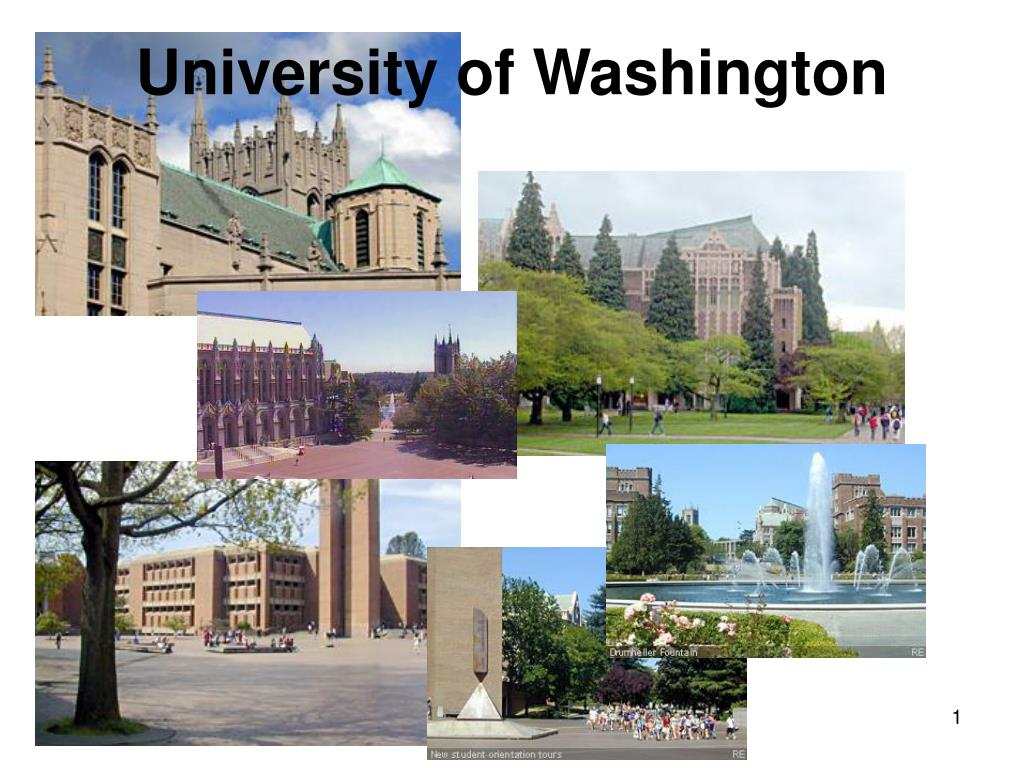 university of washington l.