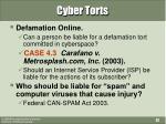 cyber torts