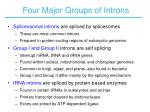 four major groups of introns