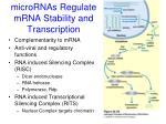 micrornas regulate mrna stability and transcription