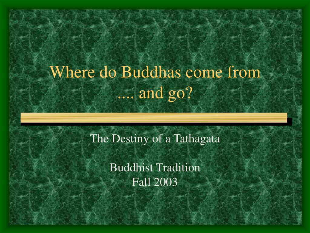 where do buddhas come from and go l.