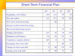 short term financial plan