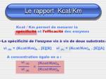 le rapport kcat km14