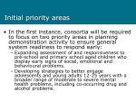 initial priority areas