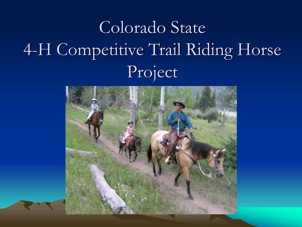 colorado state 4 h competitive trail riding horse project l.