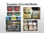 examples of leveled books