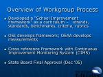 overview of workgroup process10