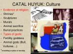 catal huyuk culture