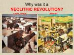 why was it a neolithic revolution