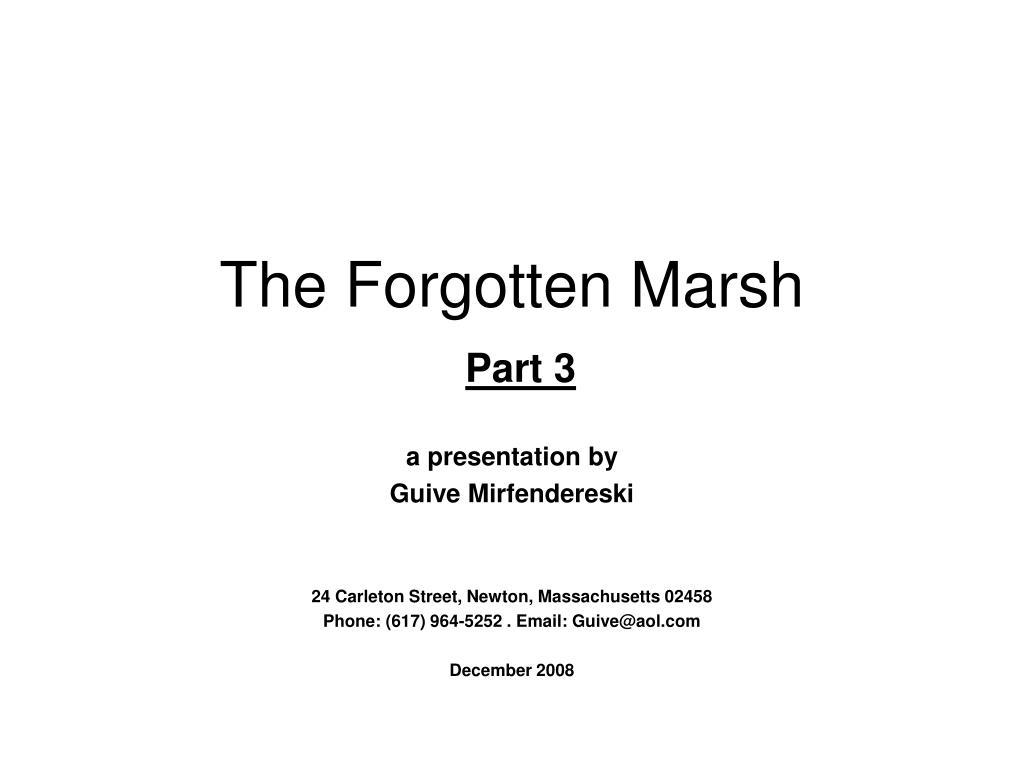 the forgotten marsh part 3 l.