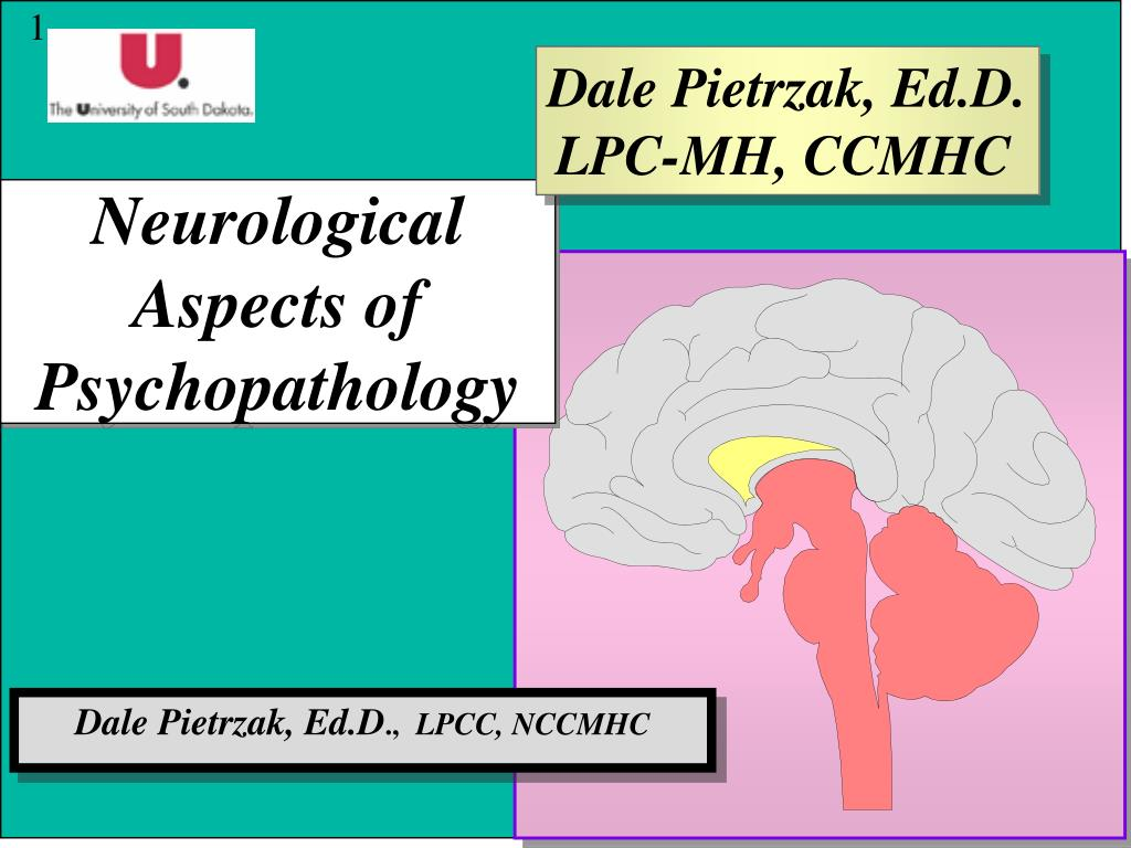 neurological aspects of psychopathology l.