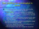 exon shuffling via recombination in introns