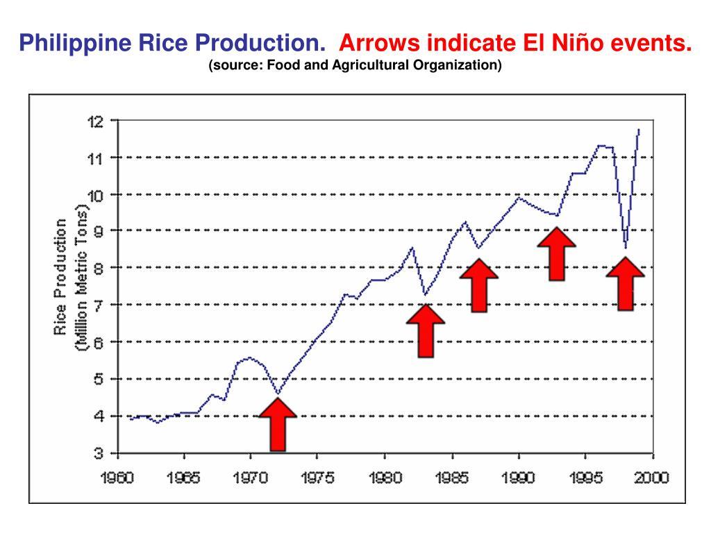 Philippine Rice Production.
