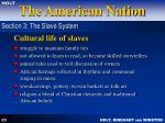 cultural life of slaves