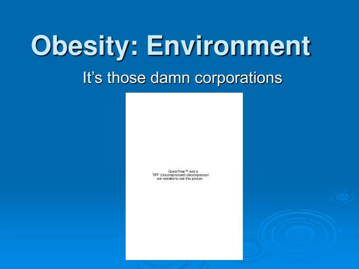 Obesity environment