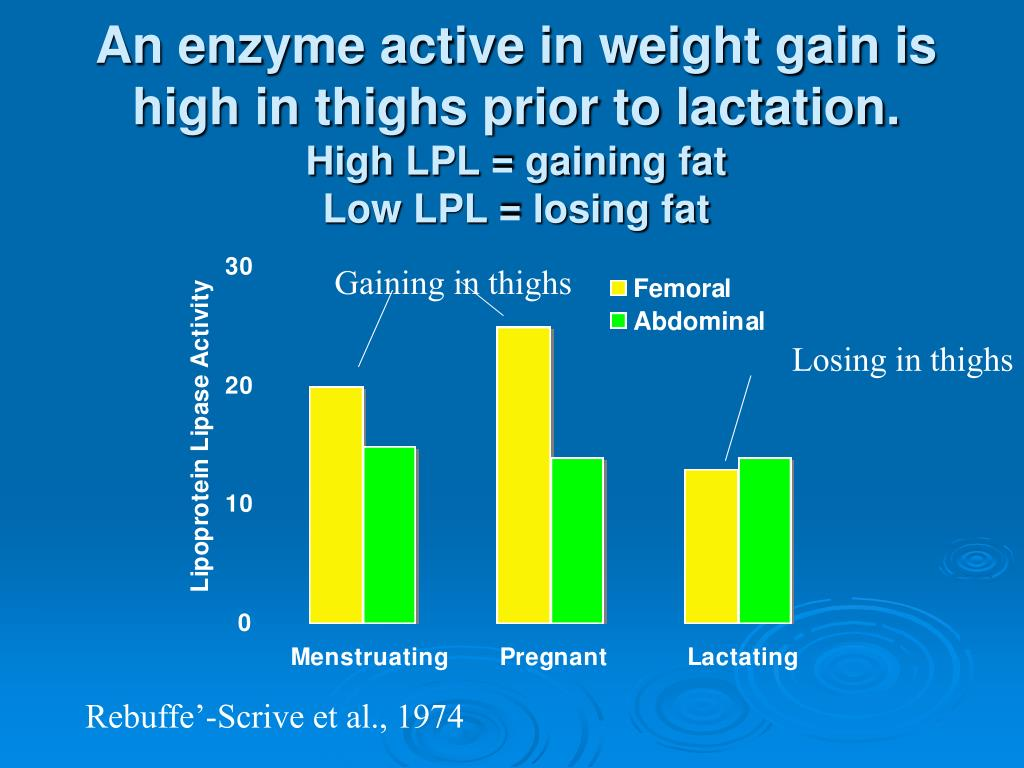 An enzyme active in weight gain is high in thighs prior to lactation.