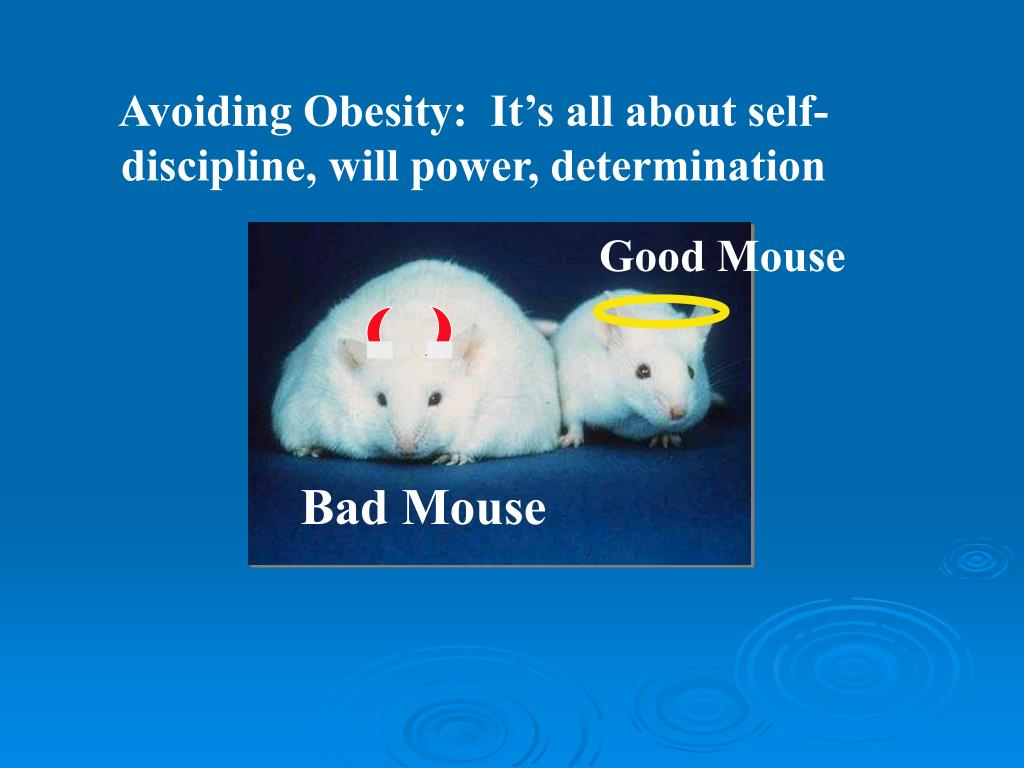Good Mouse