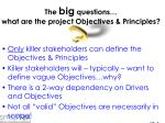 the big questions what are the project objectives principles