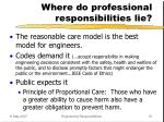 where do professional responsibilities lie