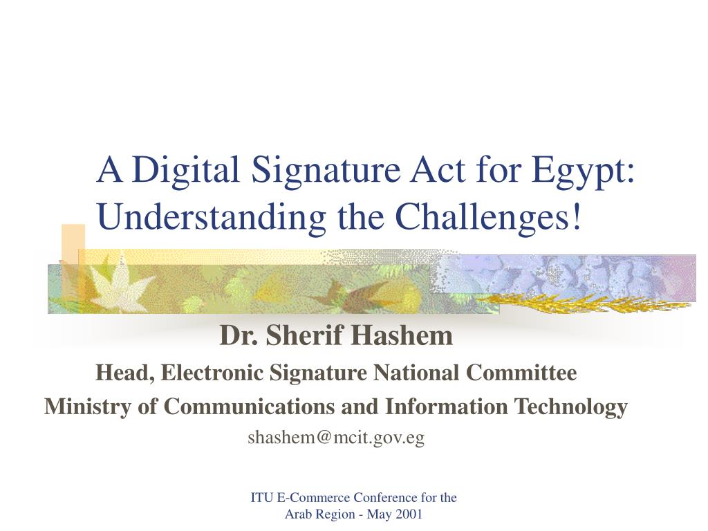 a digital signature act for egypt understanding the challenges l.