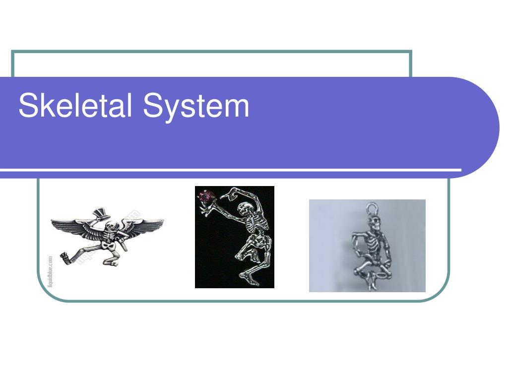 skeletal system l.