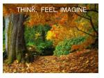 think feel imagine