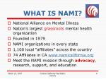 what is nami