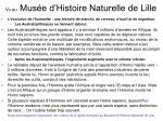 vu au mus e d histoire naturelle de lille11