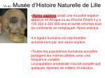 vu au mus e d histoire naturelle de lille18