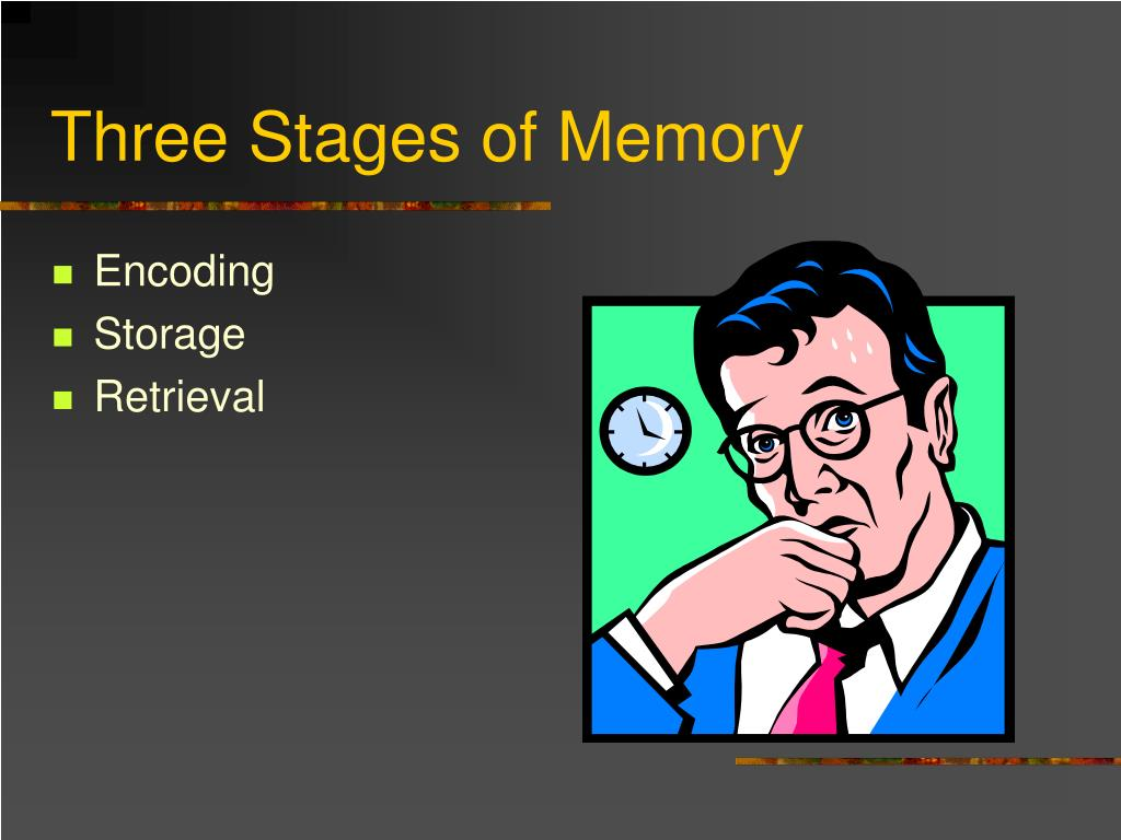 three stages of memory l.