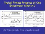 typical fitness progress of one experiment in batch c