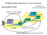 ip multimedia subsystem access security
