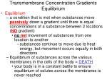 transmembrane concentration gradients equilibrium