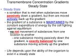 transmembrane concentration gradients steady state