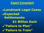 expert consultant