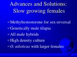 advances and solutions slow growing females