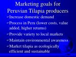 marketing goals for peruvian tilapia producers