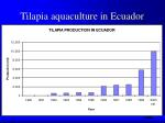 tilapia aquaculture in ecuador