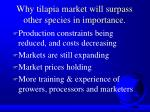 why tilapia market will surpass other species in importance