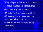 why tilapia markets will surpass other species in importance