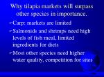 why tilapia markets will surpass other species in importance27